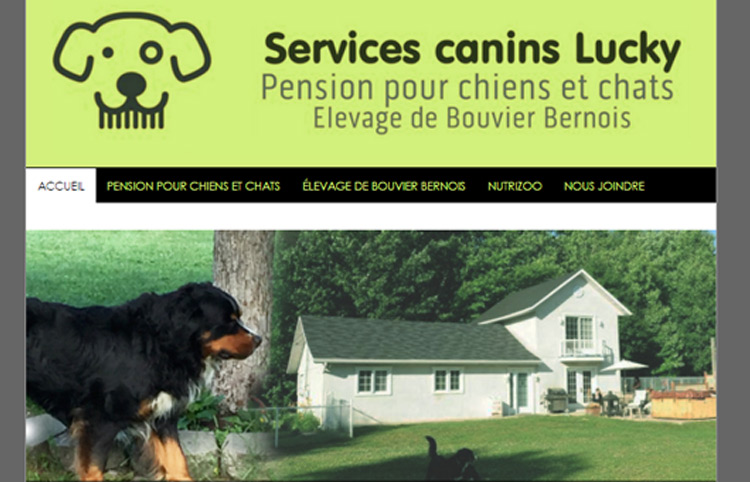 Services Canins Lucky